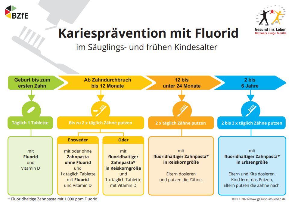Die Pflege der ersten Zähnchen - mit Fluoriden?